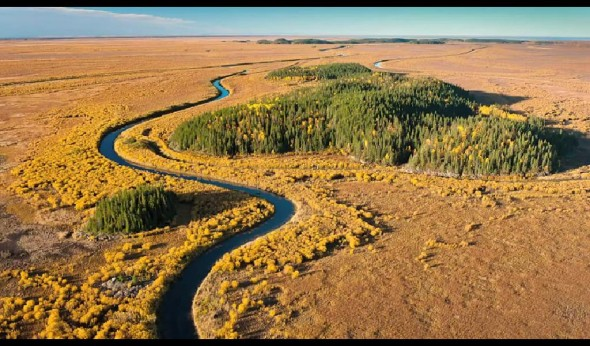 living off the land, wetlands, Athabascan Tar Sands, Alberta, Canada, boreal forest